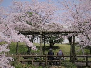 挨拶は  まず桜咲く  話から
