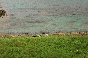 スコトン岬トドシマ展望台